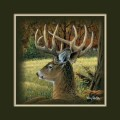 """Paper > Unsigned > Companions > Unframed > 8""""×8"""": Deer"""
